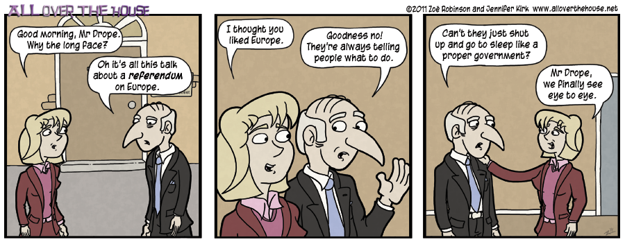 European referendum