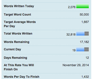32818 words and counting. This year's NaNoWriMo is going well.
